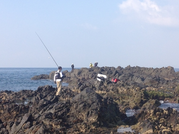 壱岐石鯛2