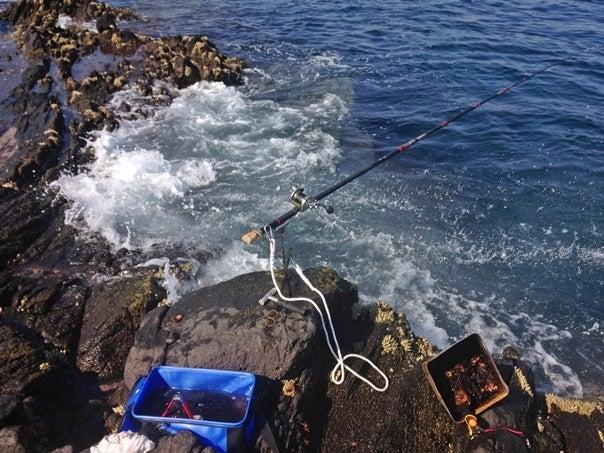 壱岐石鯛3