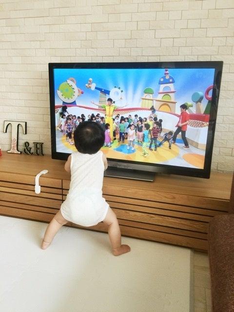 テレビ つけ っ ぱなし