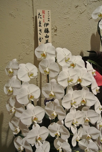 たまさか銀座 伊藤由美ママよりの花