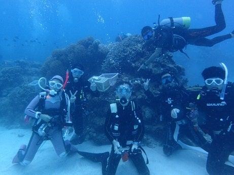 サンゴ植え付け5