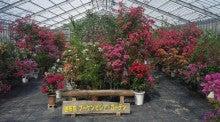 熱帯植物園_由布島