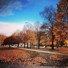 ボストンの秋