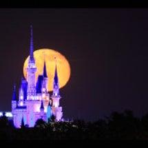 満月のワークショップ