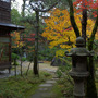 旧齋藤家別邸の紅葉