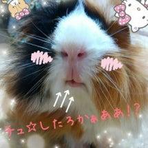 愛らしい→唇w