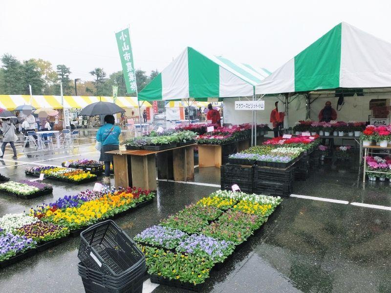 小山市農業祭004