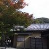 高台寺の紅葉の画像