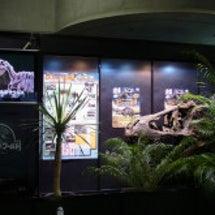 横浜 恐竜展