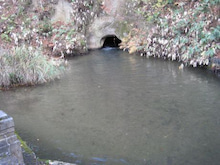 猪苗代湖水