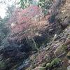 再び☆滝への画像