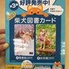 江崎書店 静岡イトーヨーカドー店の画像