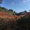 京都にの画像