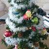 Merry Christmas everyone!_の画像
