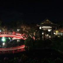 ♪夜の神泉苑♪