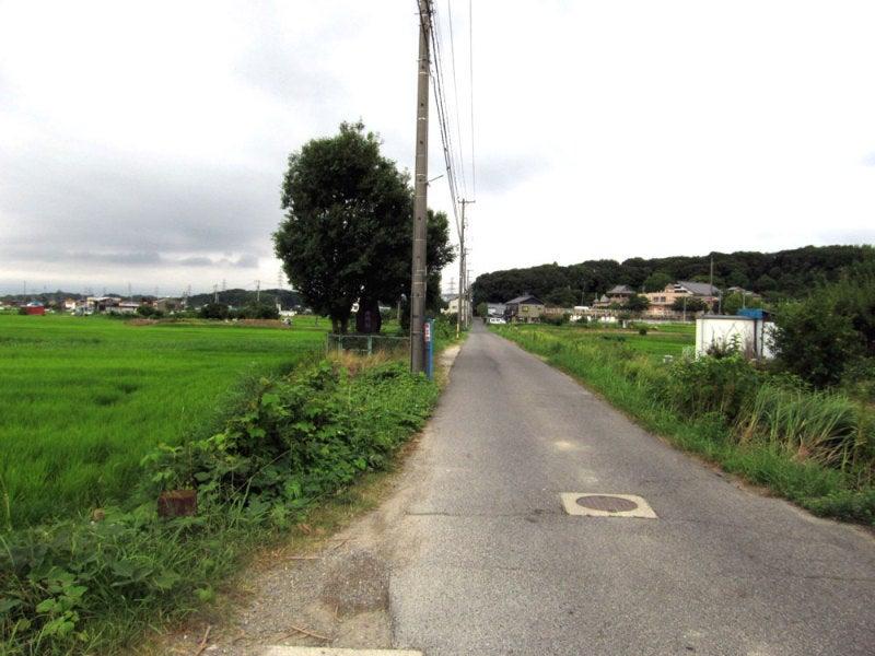 藤島城①東から