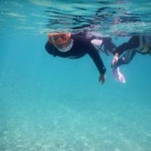沖縄 自然満喫 海に…