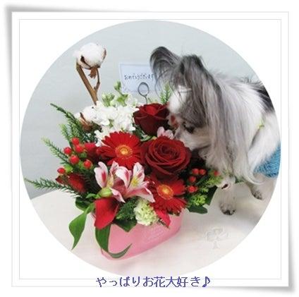 お花大好き!