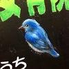 鳥さんイラストの画像