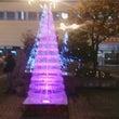 めい子の会&クリスマ…