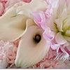 フレッシュフラワーの集中レッスンへ◆KiyoのDiaryの画像