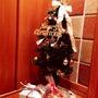 クリスマス♡わくわく…