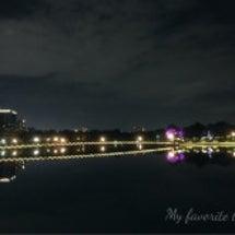 月夜の散歩