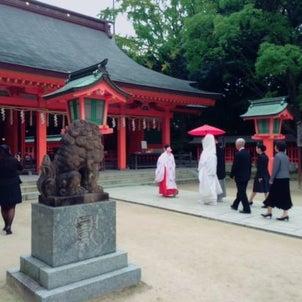 ~住吉神社結婚式~の画像