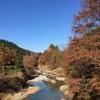 小安温泉峡 「お宿風の抄杉浦節美さん」3回目の画像