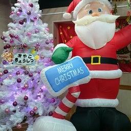 画像 ひよこ親子教室 クリスマス会の様子 の記事より