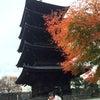 ただいま日本♪の画像