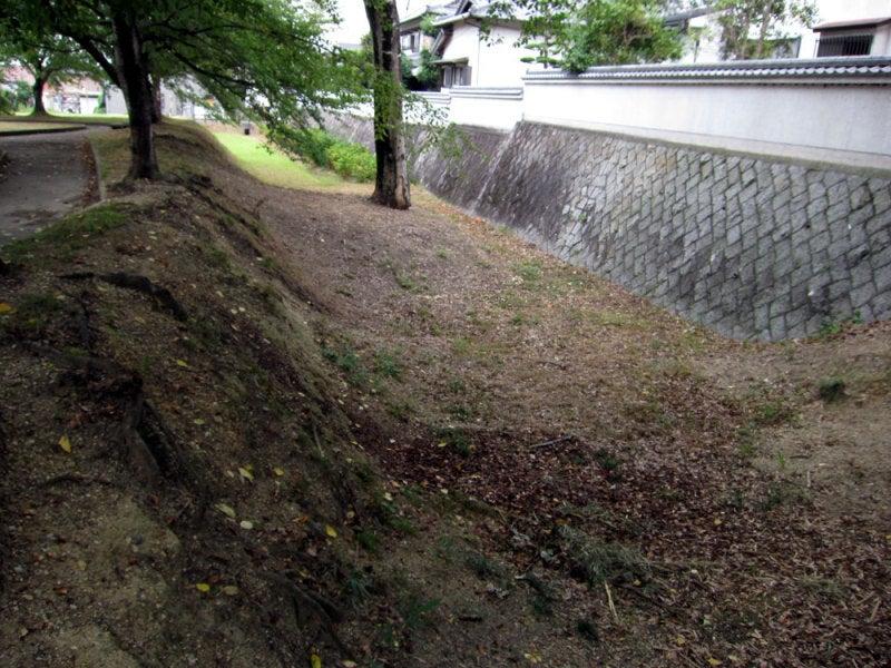 沓掛城④堀
