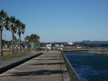 海 釣り 釣果 新居 公園 新居海釣り公園での釣果は? 2021.4.8やっとサビキで小魚,中アジも…