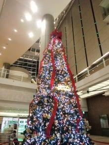 ミューザ川崎のクリスマスツリー