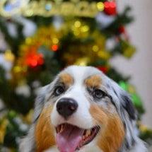 Christmas写…