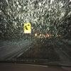 今年初めての吹雪の画像