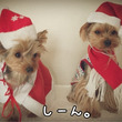 いまさらクリスマス。