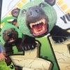 くまなく探した熊の画像