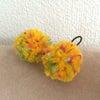ケイトポンポン*canaria yellow × colorful bonbonの画像