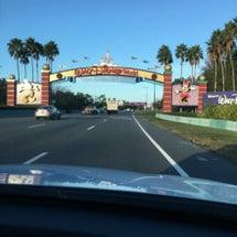 フロリダ ディズニー…