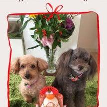 新年のご挨拶 エヘヘ…