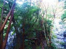 熊野|才助の滝