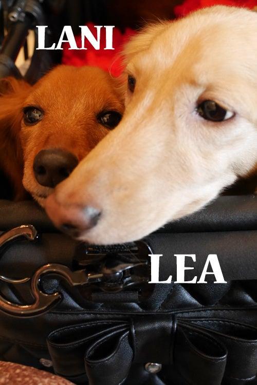 LANI&LEA