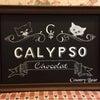 作品のご紹介『カリプソショコラのサインボード』⭐️の画像