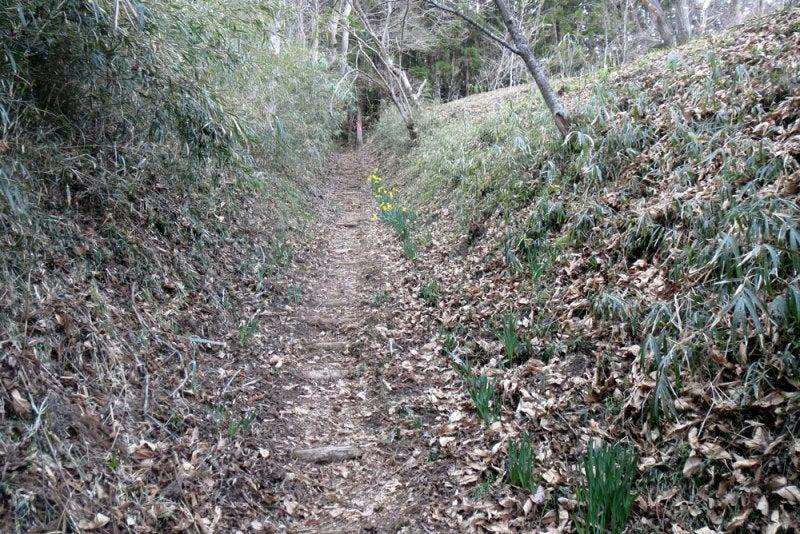 岩櫃城⑩中の城奥の堀