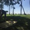 ハワイのヨガ♡の画像