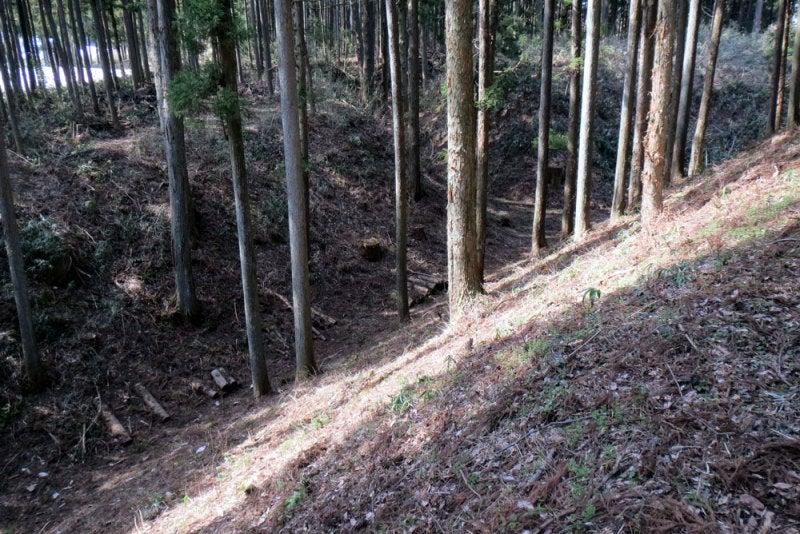 中山城⑨空堀(上から)