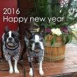 2016 Happy…