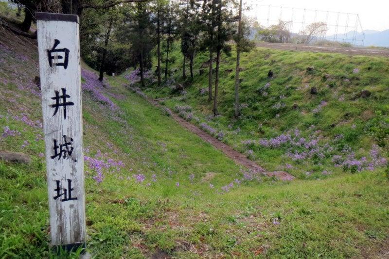 白井城⑨堀