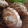 自家製酵母パン教室gluttonのブログ